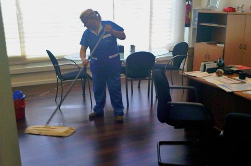 Limpieza de chalets y casas